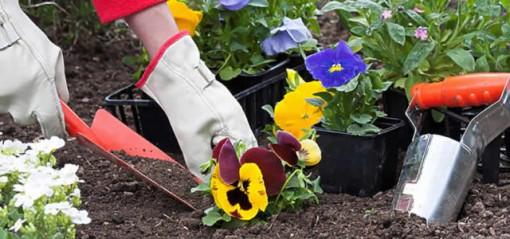 jardineria-640x300